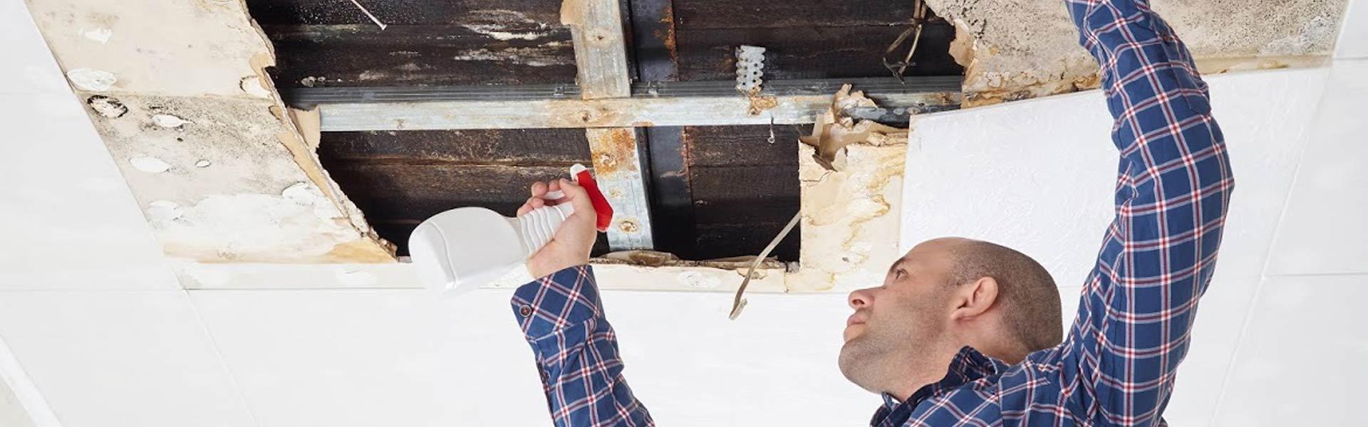 emergency-home-repair-ceiling